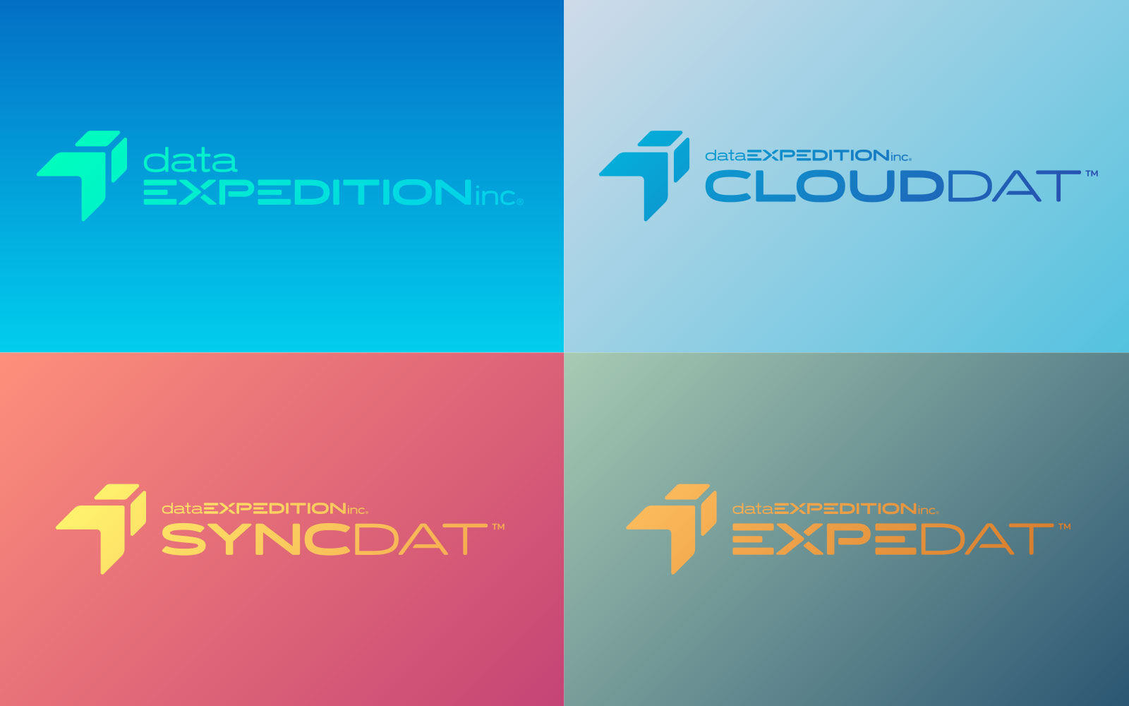 Data Expedition - Logo Design - All Logos