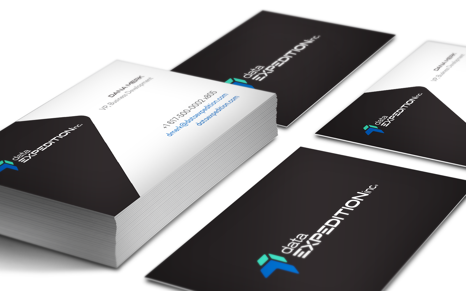 Data Expedition - Business Card Design