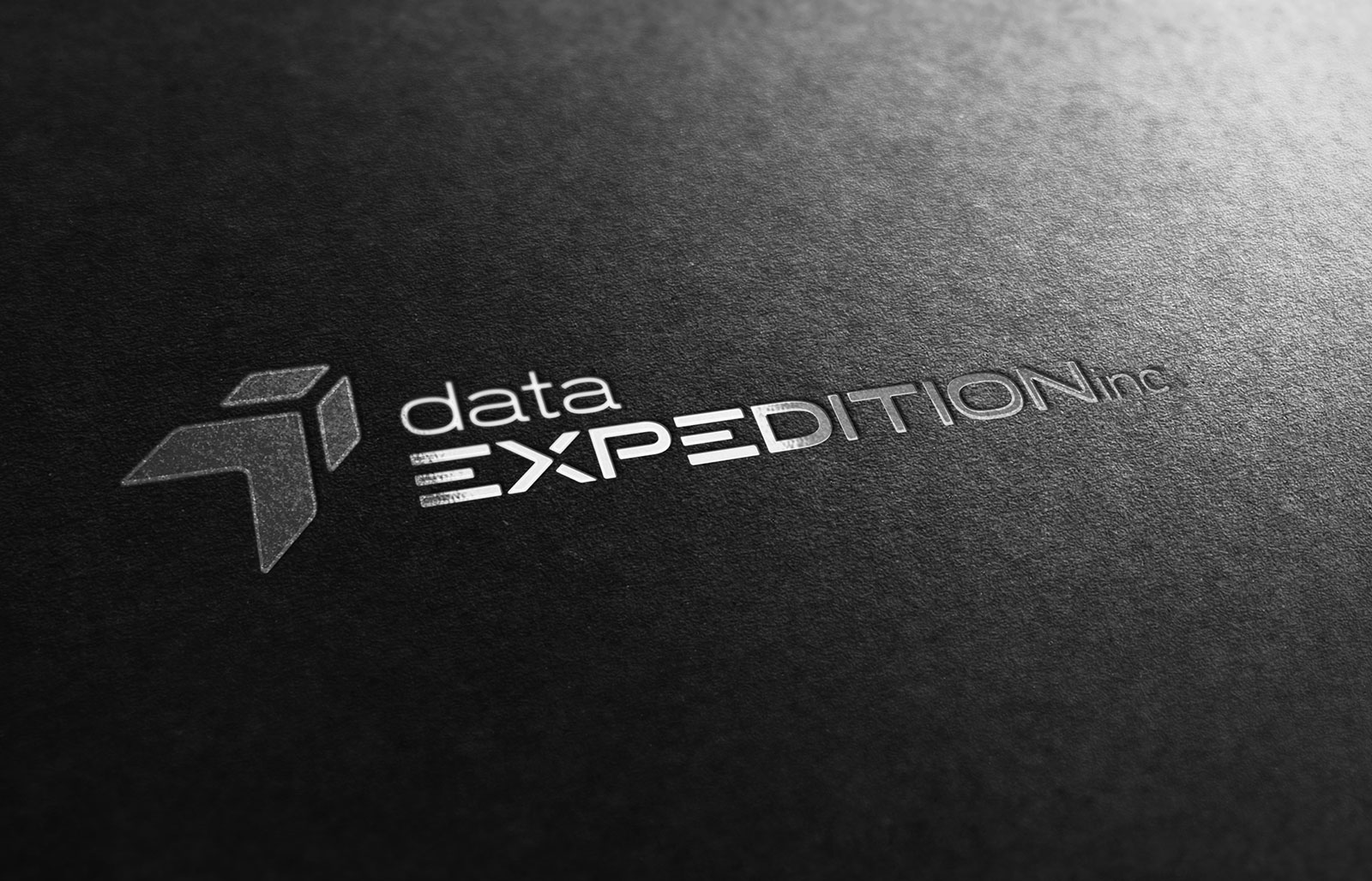 Data Expedition - Logo Design - Foil Stamp